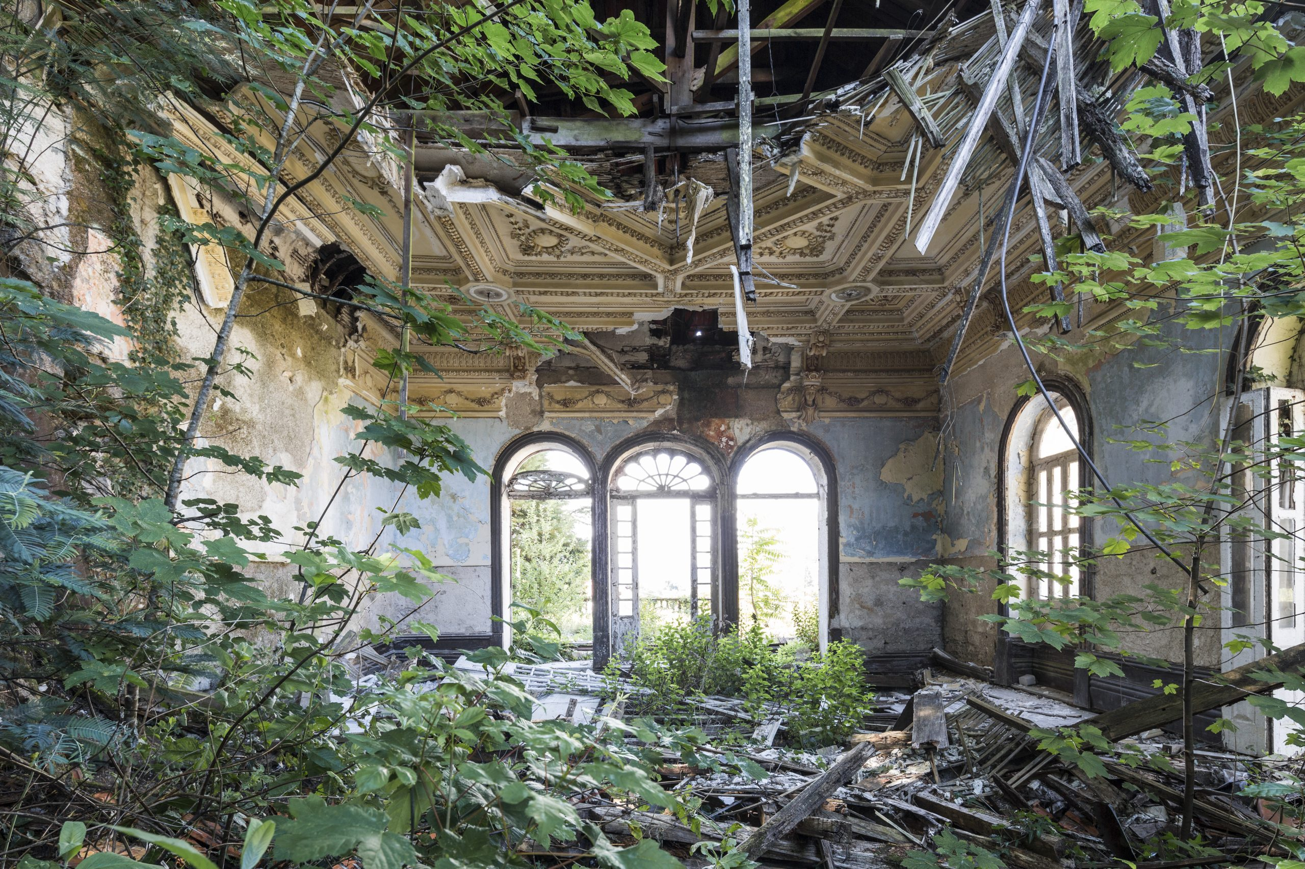 Naturalia: Chronicle of Contemporary Ruins