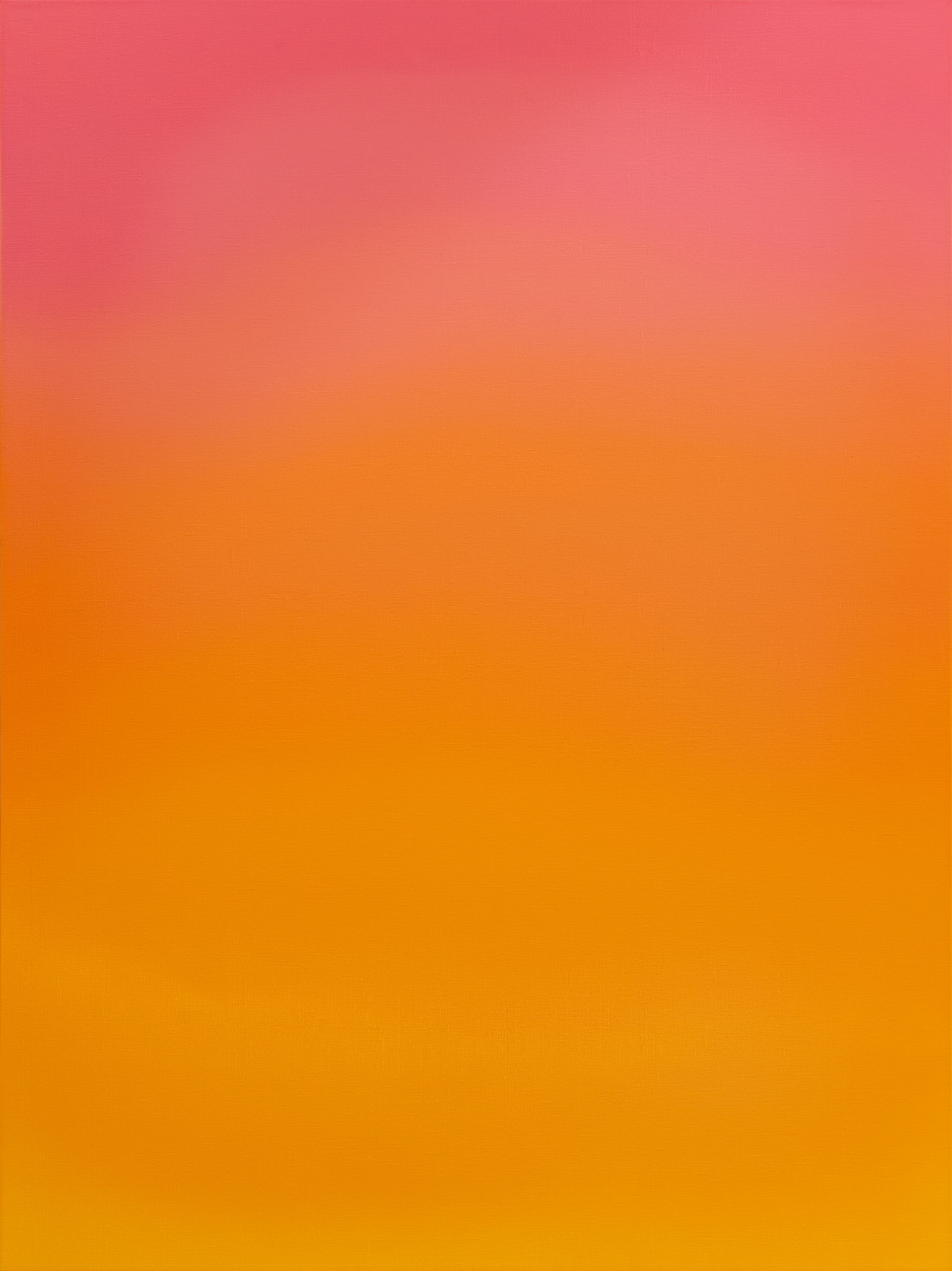 Untitled (Brilliant Pink, Magenta, Naples Rose & Cadmium Yellow Medium)