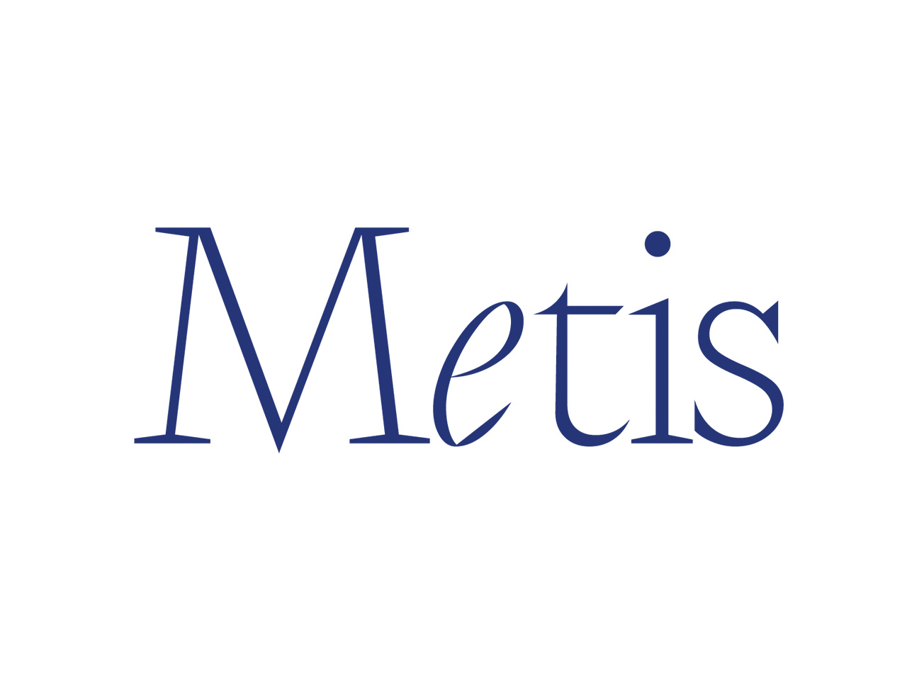 Metis Art Education